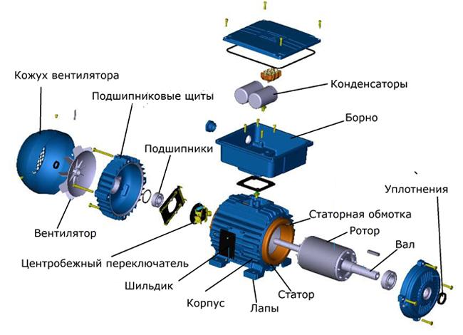 Схема устройства асинхронного двигателя