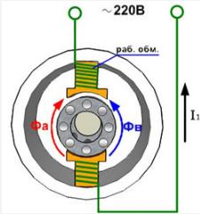 Принципиальная схема однофазного асинхронного двигателя