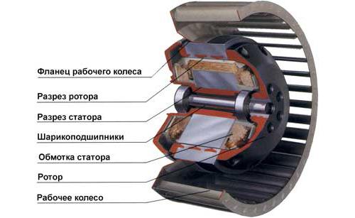 Схема устройства электродвигателя
