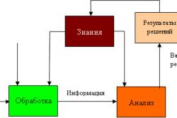 Роль информации в принятии решений человеком