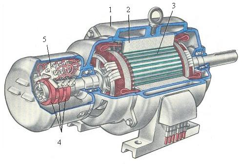 Асинхронный двигатель в разрезе