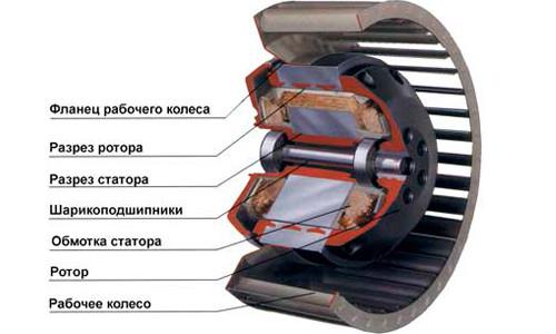 Схема электродвигателя в разрезе