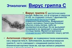 Вирус гриппа С