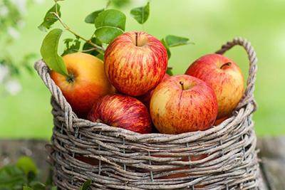 яблоки в корзинке