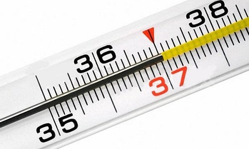 На увеличение выработки тиреоидного гормона указывает повышение температуры тела