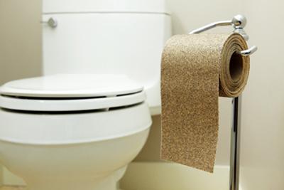 туалетная бумага и унитаз
