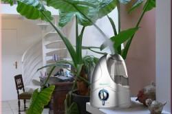 Увлажнение воздуха в комнате для облегчения сухого кашля