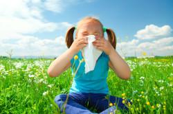 Аллергия - причина развития бронхита