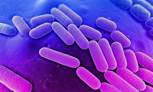 Процедура помогает избавиться от бактерий на внешних половых органах и слизистых оболочках
