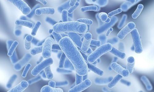 Бактерии и вирусы провоцируют воспаление мочеиспускательного канала