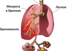 Легкие при пневмонии