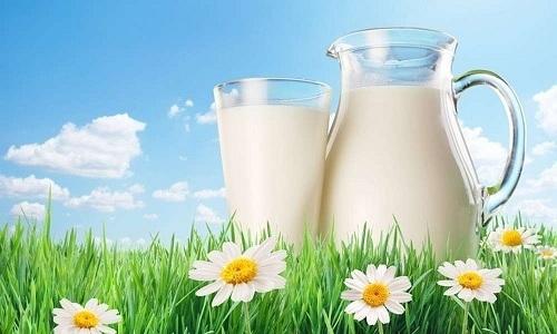 Молочная диета помогает в лечении цистита, поскольку исключает раздражающее воздействие