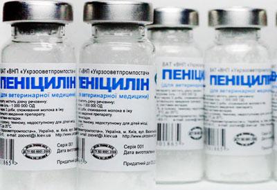 Пенициллин для инъекций