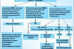 Выбор препарата для лечения бронхита